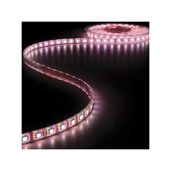 Ruban LED Blanc Chaud 24V 12mm x 5m 300 LEDS IP68 à 99,90